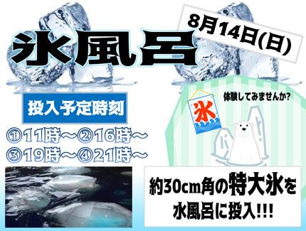 news_koriburo.jpg